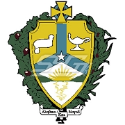 Alpha Kappa Lambda Patch