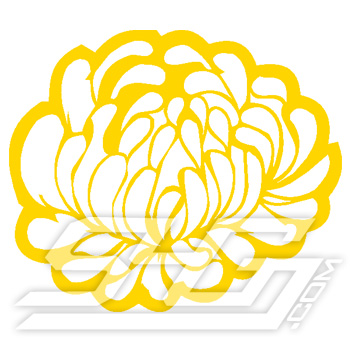 Chrysanthemum Icon