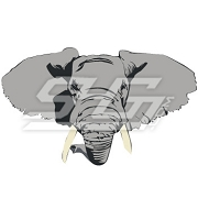 Detailed Elephant Head Icon