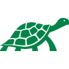 Crawling Turtle Icon