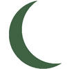 Green Crescent Moon Icon