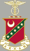 Kappa Sigma Crest Patch