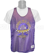 Omega Psi Phi Dawg 4 Life Mesh Basketball Jersey, Purple
