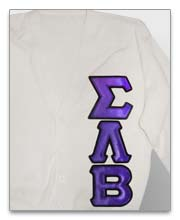 Sigma Lambda Beta Sweaters