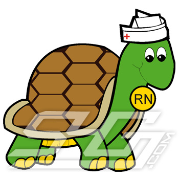 Nurse Turtle Patch