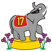 Lone Ranger Elephant Icon