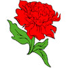 Red Carnation Patch