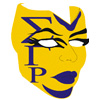 SGRho Mask with Greek Letters Patch