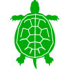 Top View of Turtle Icon