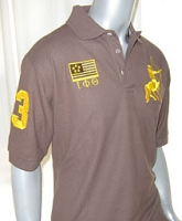 Iota Phi Theta Flag and Centaur Polo