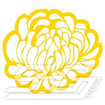 Chrysanthemum Patch